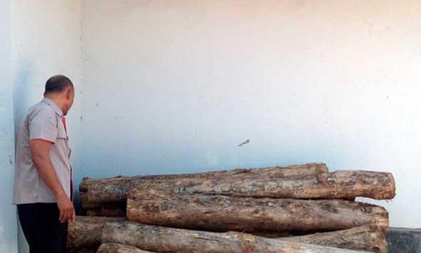 Polisi Hutan Mantingan Tangkap Basah Dua Pencuri Kayu Jati