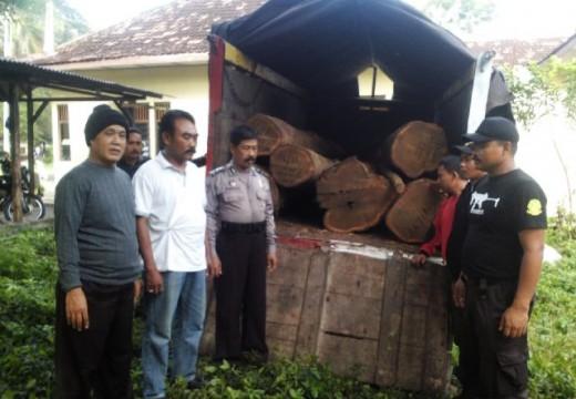 Polhut Gagalkan Pencurian 10 Batang Jati di Hutan Tuder