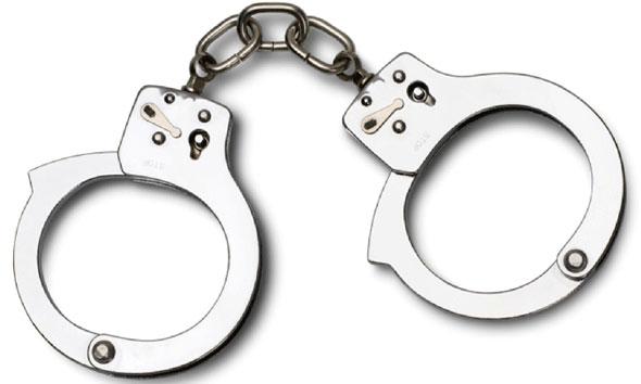 Polisi Amankan Dua Truk Pengangkut Kayu Ilegal