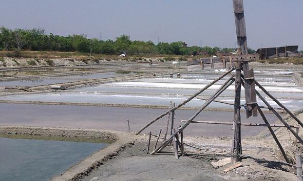 Gara-gara Stok Melimpah, Harga Garam Krosok di Rembang Merosot
