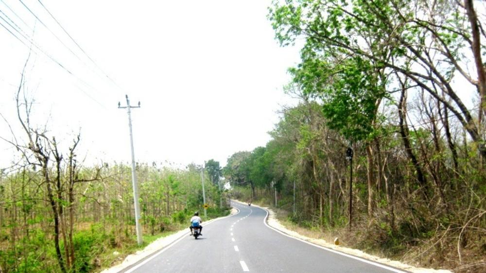 Ruas Jalan Rembang-Blora pada Kilometer 23, lokasi kecelakaan yang menewaskan warga Kecamatan Ngawen Kabupaten Blora, Senin (7/12/2015) pagi. (Foto: hamidanwar.blogspot.com)
