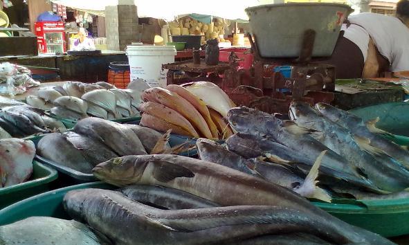 Pasokan Normal, Konsumsi Ikan di Pasar Sepi