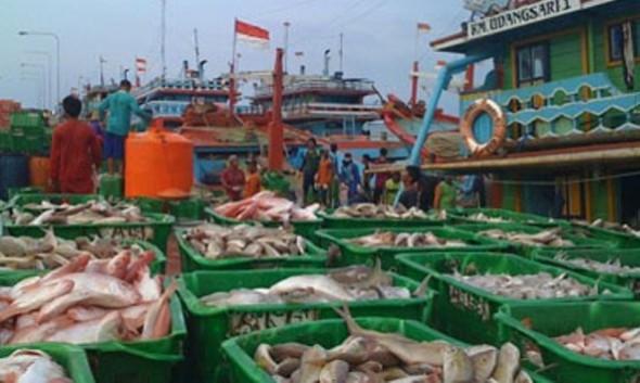 Diundur Enam Bulan, Nelayan Cantrang Sedikit Lega