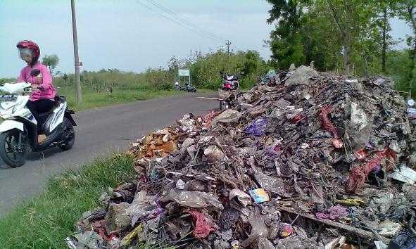 Marak Ilegal, Desa Didorong Bangun TPS dengan DD