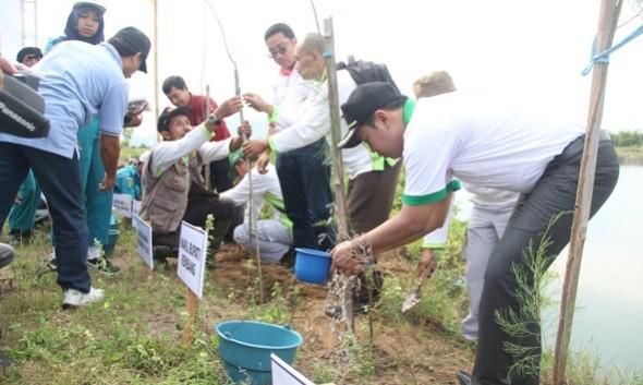 Wakil Bupati Rembang Bayu Andriyanto turut serta menanam cemara laut bersama Kagama Rembang di Pantai Karangjahe, Kamis (2/6/2016) pagi. (Foto: mataairradio.com)