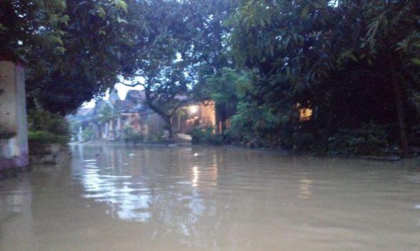 BPBD: Rumah Terdampak Banjir Rembang Capai 979