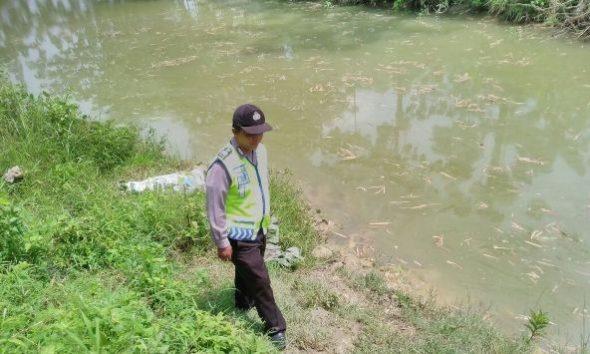 Embung Slamet di Desa Seren Kecamatan Sulang, lokasi kejadian tenggelamnya calon pengantin bernama Supini (24) warga desa setempat. (Foto: Pujianto)