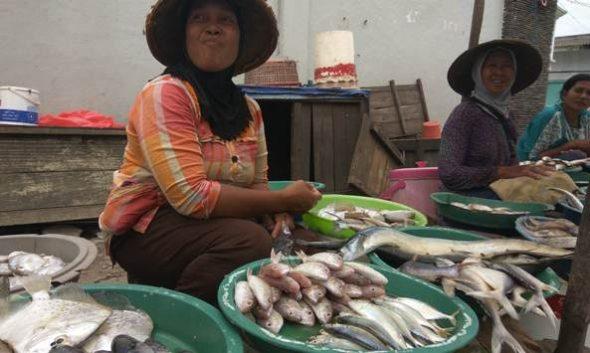 Nelayan Cantrang Mogok, Harga Ikan Melejit