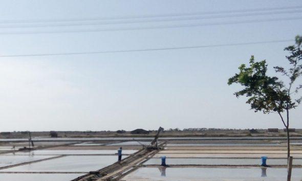 Mulai Produksi, Petani Garam Butuh Bantuan Geoisolator