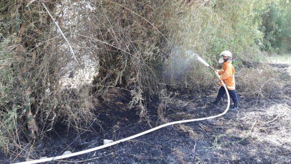 Rumpun Bambu Terbakar Bikin Panik Warga Weton