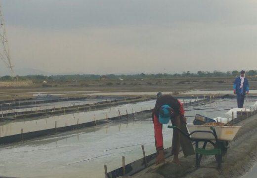 Pemkab Rembang Tak Ajukan lagi Impor Garam