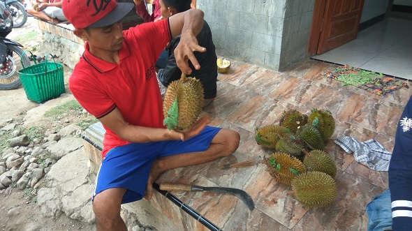 Petani Durian Butuh Perhatian Pemerintah