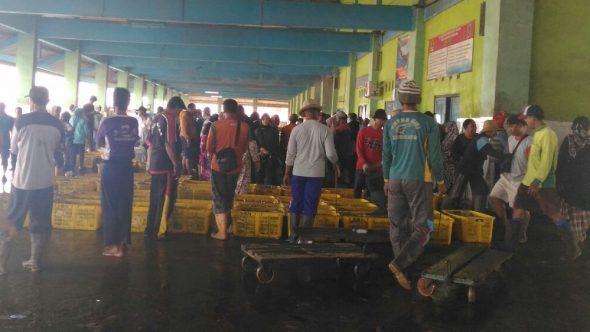 Ikan Tangkapan Nelayan Purseseine Kembali Dilelang di TPI Tasikagung