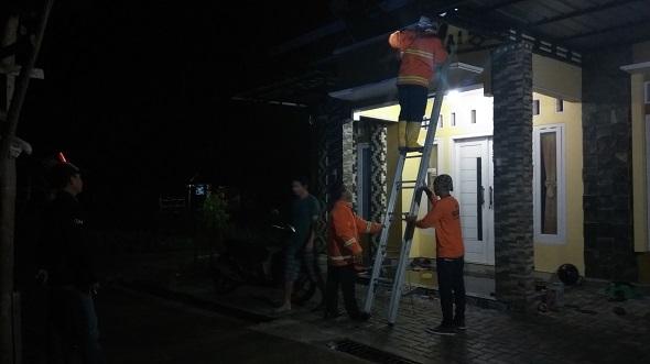 Petugas Damkar Bantu Warga Evakuasi Sarang Tawon di Sidowayah