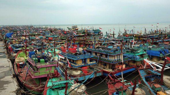 136 Kapal Cantrang Belum Memenuhi Persyaratan Verifikasi