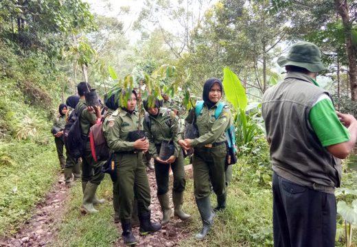 Antisipasi Kerusakan Lingkungan, Warga Tanami Lereng Gunung Butak