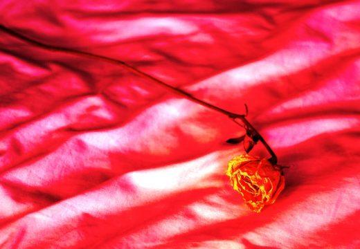 Oknum Guru Di Sale Diduga Melakukan Tindakan Pelecehan Seksual
