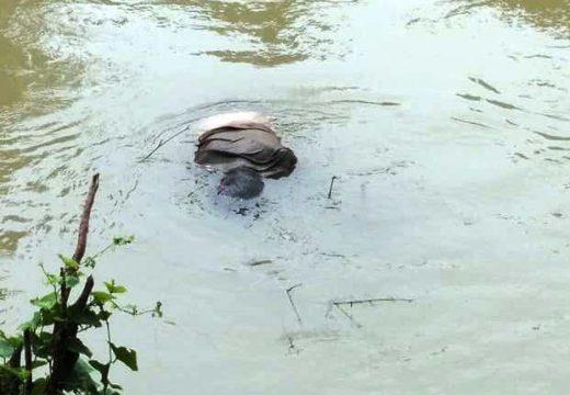 Sesosok Mayat Ditemukan Warga di Bawah Jembatan Babagan