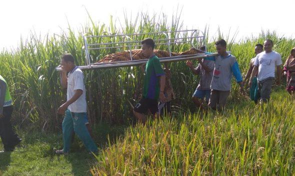 Siswa SLB di Turusgede Meregang Nyawa di Embung