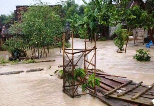 Banjir Menoro Sebabakan 20 Hektare Lahan Padi Terancam