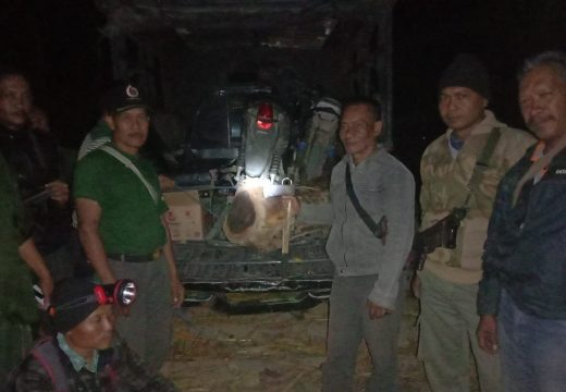 Polisi Hutan Tangkap Seorang Pencuri Kayu Sonokeling