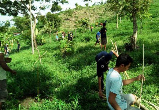Pemuda Trembes Lindungi Makam Keramat dengan Tanam Pohon