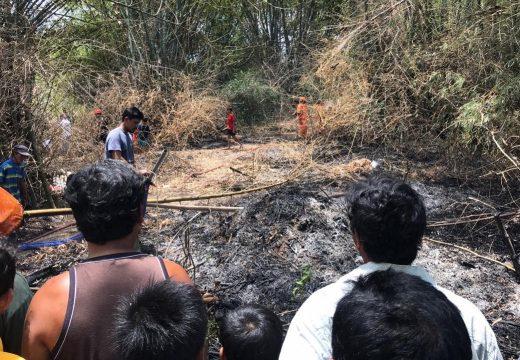 Ladang Bambu di Kasreman Terbakar Gegerkan Warga