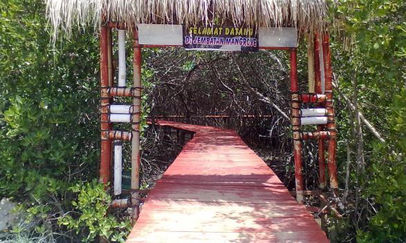 Persaingan Wisata Sengit, Pengelola Hutan Mangrove Optimistis