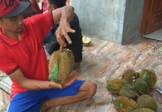 Produktivitas Durian Criwik Menurun Tahun Ini
